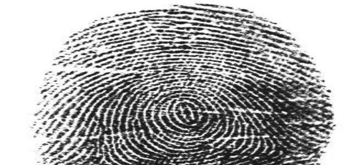 New fingerprinting technology allows for speedier processing of background checks